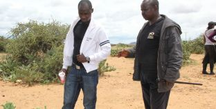 Smartphone App makes it Easy to Report Invasive Species in Kenya's Northern Rangelands