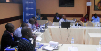 Assessing Institutional Capacity of Rwanda's Agencies