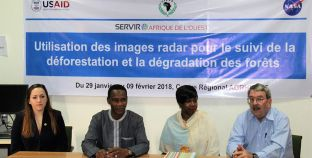 Training on Synthetic Aperture Radar (SAR) for Mapping of Forest Degradation and Deforestation in Niger