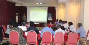 GMES & Africa RCMRD Partners Needs Assessment Workshops